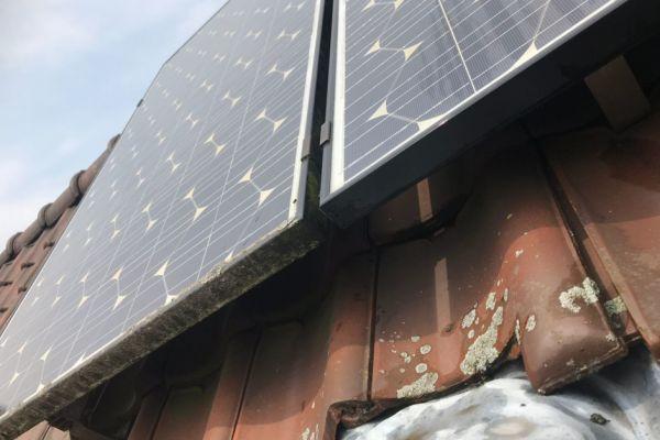 sdkcleaning-detailcleaining-zonnepanelen-223D919344-E3F8-678F-9C3A-E60838C9D34F.jpg