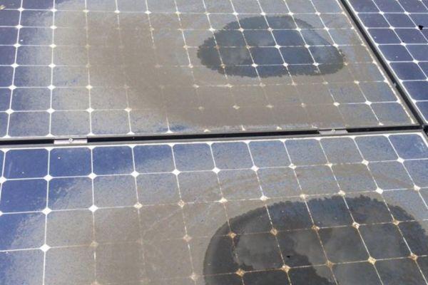 sdkcleaning-detailcleaining-zonnepanelen-40AEF31AA-A464-7842-563A-13EB14E31E4E.jpg